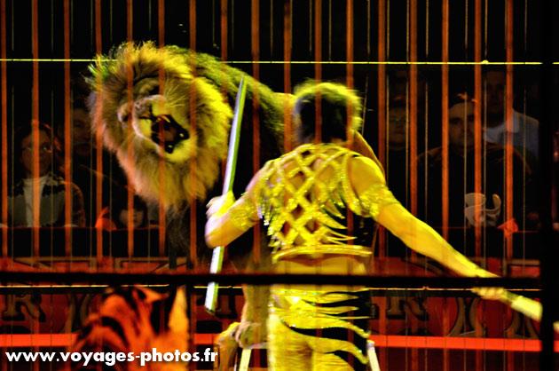 Le dompteur et le lion