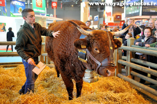 Salon de l 39 agriculture voyages en photos - Salon de l agriculture place ...